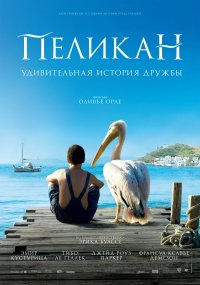 Постер Пеликан